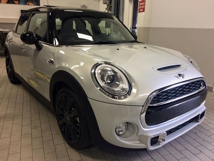 Mini S and paint protection
